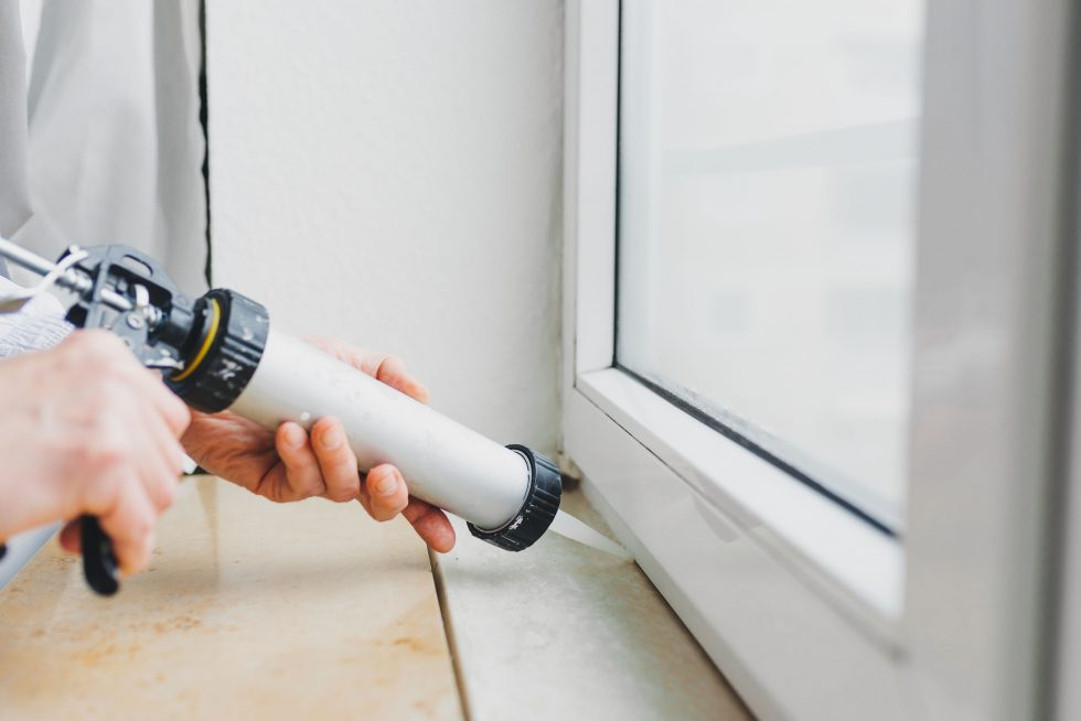 Top 10 Pest-Proofing Tips For Fall